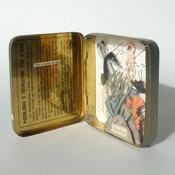 Hippolytus-1-celine-chevrel-dioramas-abysse