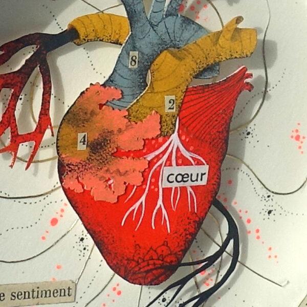 Par-ce-sentiment-3-celine-chevrel-dioramas-anatomie