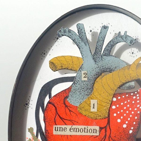 Une-emotion-4-celine-chevrel-dioramas-anatomie