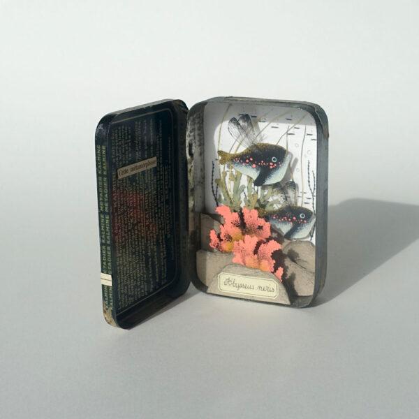 chapitre-premier-1-celine-chevrel-dioramas-abysse