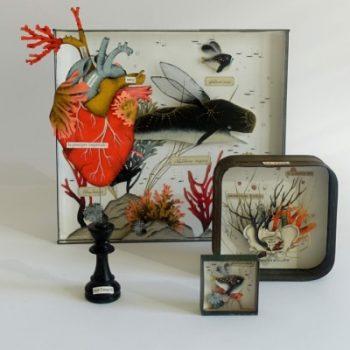 abysses-diorama-boutique-celine-chevrel
