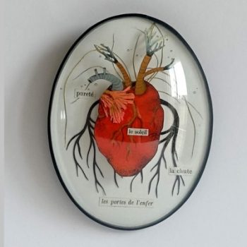 anatomie-diorama-boutique-celine-chevrel