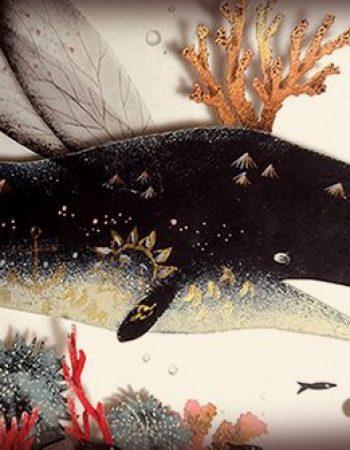 détails baleine - illustration newsletter celine chevrel